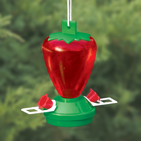 ArtLine - 12 oz Strawberry Shaped Hummingbird feeder at Sears.com